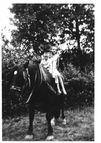 cheval enfants.jpg
